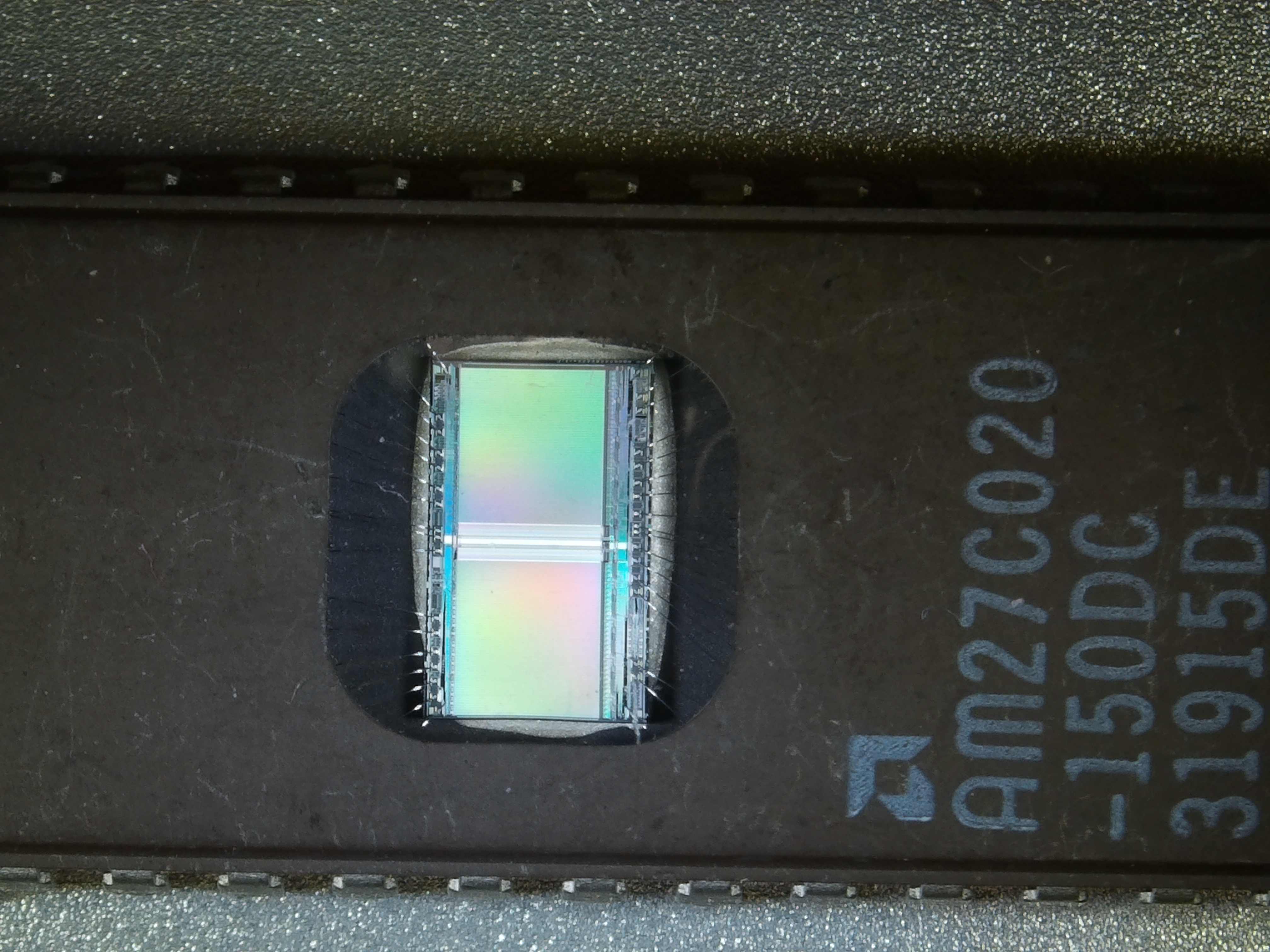mikroskop przykładowe fotografie